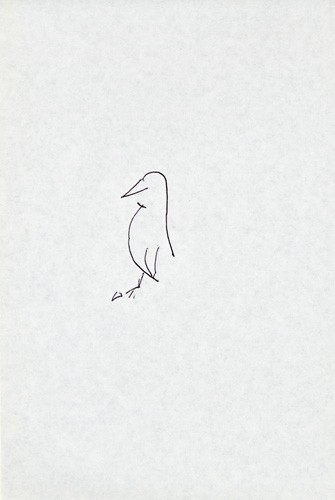 http://passiveactivism.net/files/gimgs/th-45_01bird.jpg