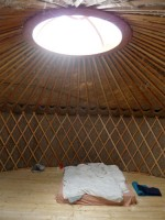 http://passiveactivism.net/files/gimgs/th-24_11yurt-at-uferstudios-berlin_larsschmidt.jpg